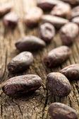 Cocoa beans — Stock Photo