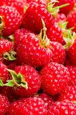 A lot of raspberries — Stock Photo