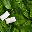 Mint leaves and chewing gum - Stock Photo