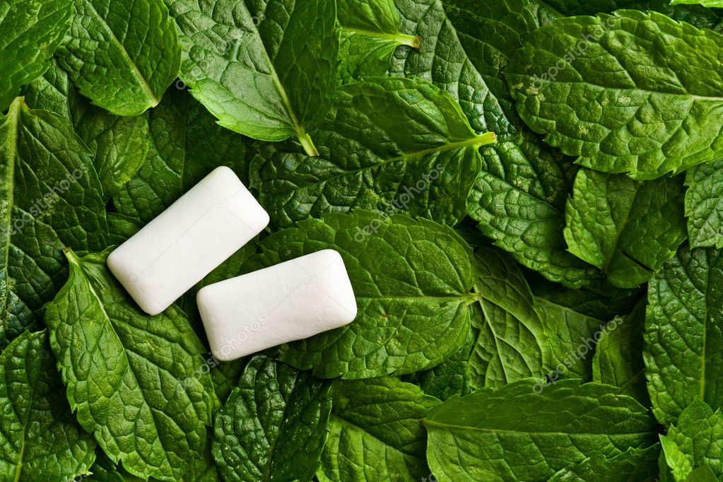 The mint leaves and the chewing gum — Stock Photo #11874411