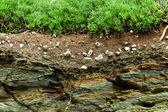 Secção transversal até rock da terra — Foto Stock
