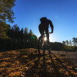 Biker Riding in Forest — Stock Photo #10736417