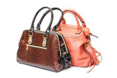Two Leather Ladies Handbag — Stock Photo
