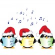 Stock Vector: Carol singing penguins isolated