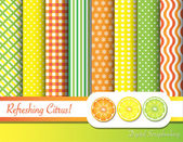 Citrusové scrapbooking — Stock vektor