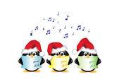 Pingouins de chant de Carol isolés — Vecteur