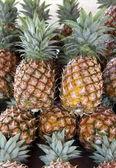 Pineapples — Foto de Stock