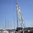 Round the World Yacht Race — Stock Photo #11814042