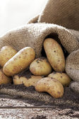 Potatoes 2 — Stock Photo