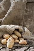 Potatoes ! — Fotografia Stock