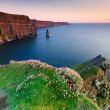 cliffs of moher at sunset — Stock Photo