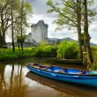 Stock Photo: Boat at Ross Castle
