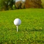 Golf ball on the grass — Stock Photo #10875368