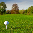 Golf ball on grass — Stock Photo #10875388