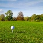 Golf ball on the grass — Stock Photo #10875412