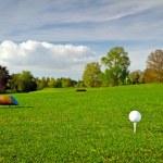 Golf ball on the grass — Stock Photo #10875515