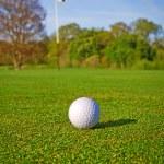 Golf ball on the grass — Stock Photo #10875662
