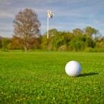 Golf ball on the grass — Stock Photo #10875685