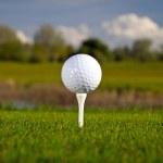 Golf ball on the grass — Stock Photo #10875788