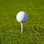 Golf ball on the grass — Stock Photo #10875809