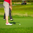 Golfer on the course - Stock Photo