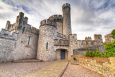 Blackrock Castle and observarory in Cork — Stock Photo
