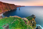 Cliffs of Moher at sunset — Stok fotoğraf