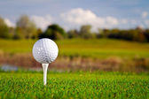 Golf ball op het gras — Stockfoto