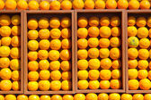 Fresh oranges in the box — Stock Photo