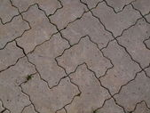 Concrete paving — Stock Photo