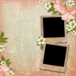 Vintage background with frames, lace and flower composition — Stock Photo