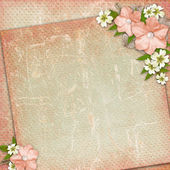 Vintage background with lace and flower composition — Stock Photo