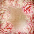 grunge beautiful roses background (1 satz) — Stockfoto