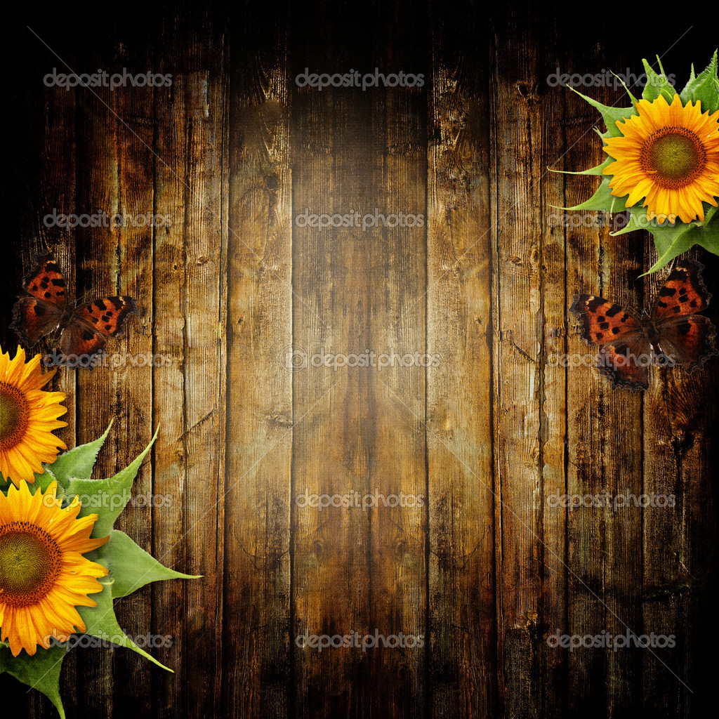 wooden background with butterfly and sunflowers — Stock Photo #11815748
