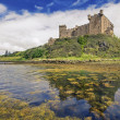 Dunvegan castle on the Isle of Skye, Scotland — Stock Photo #11780250