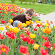 The boy sitting next to the flowerbed with tulips — Stock Photo