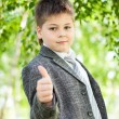The Boy in the birch forest - Stock Photo