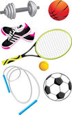 Sports objects isolated on the white — Stock Vector
