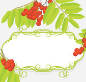 Decorative frame with rowan branches — Stock Vector