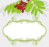 Decorative frame with rowan branch — Stock Vector