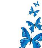 Blue buterflies — Stock Vector