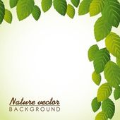 Leaves — Stock Vector