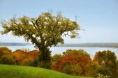 Potomac River Mount Vernon — Stock Photo