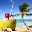 Stock Photo: Palm tree in tropical beach