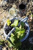 Sklizeň a víno — Stock fotografie