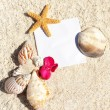 Blank paper beach sand starfish shells summer — Stock Photo #11589625