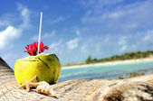 Coconuts on the beach — 图库照片