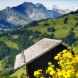 Stock Photo: A nice view of a chalet