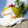Caribbean paradise beach coconuts cocktail — Stock Photo #11918201