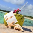 Caribbean paradise beach coconuts cocktail — Stock Photo #11918637